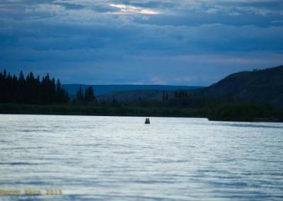 yukon-river-quest-whitehorse-dawson-yukon-1444