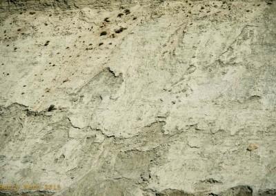 yukon-river-quest-whitehorse-dawson-yukon-8164